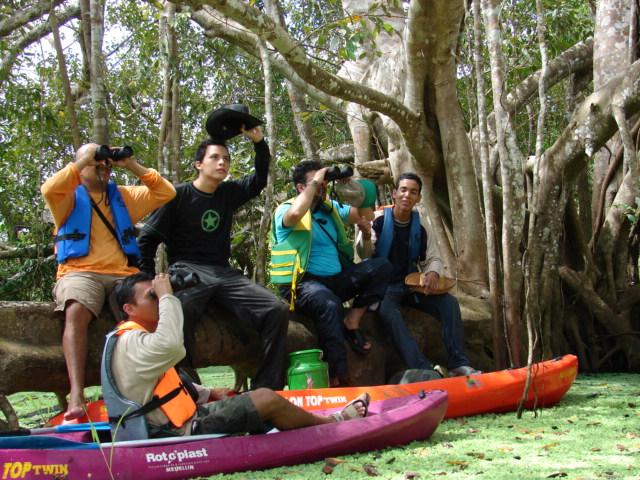 avistamiento de aves amazonas (1)