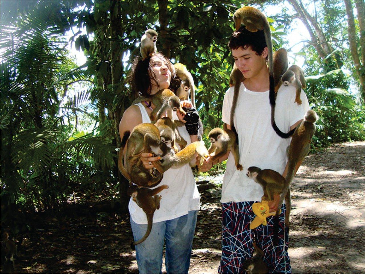 isla de los micos 2